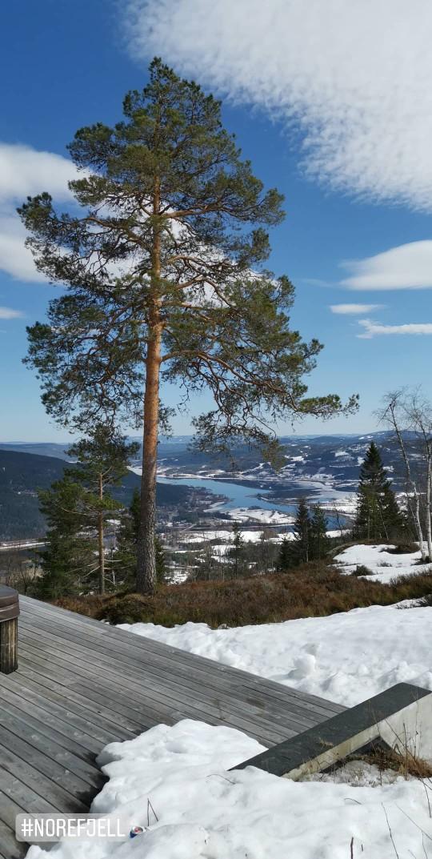 Роскошные пейзажи Норвегии - Страница 8 3d6lva10