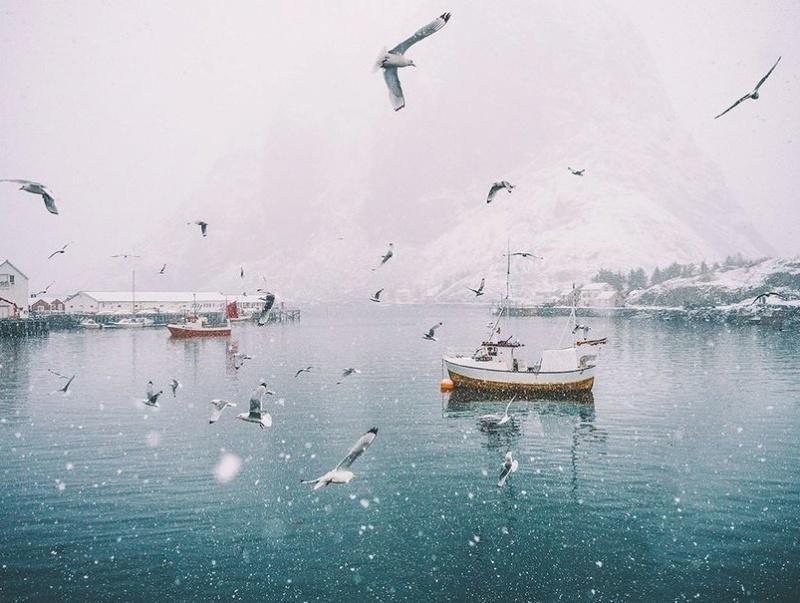 Роскошные пейзажи Норвегии - Страница 12 6z82nr10