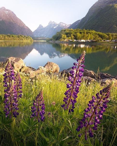 Роскошные пейзажи Норвегии - Страница 22 8tyc3a10