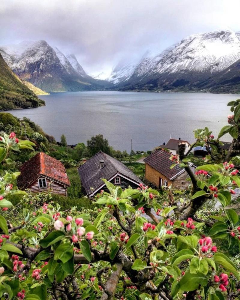 Роскошные пейзажи Норвегии - Страница 26 Ihgfre10