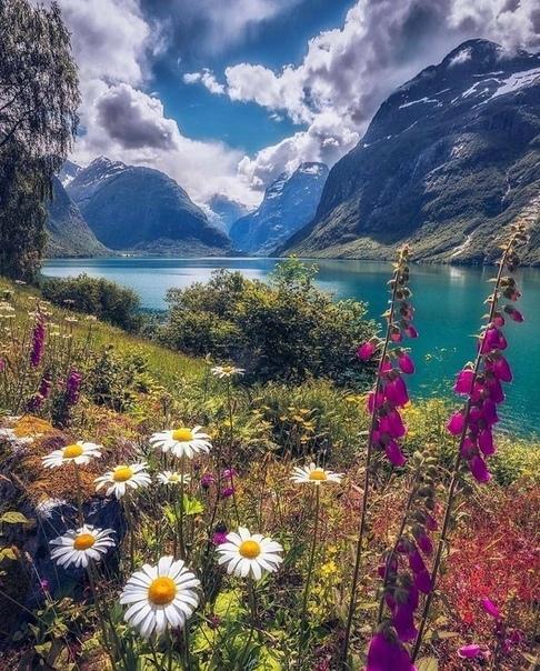 Роскошные пейзажи Норвегии - Страница 25 Jaefys10