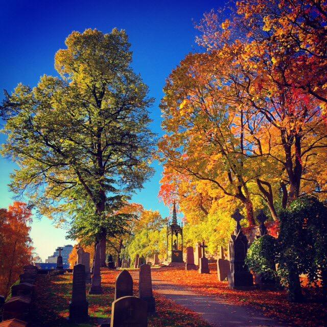 Роскошные пейзажи Норвегии - Страница 25 N2k_ba10