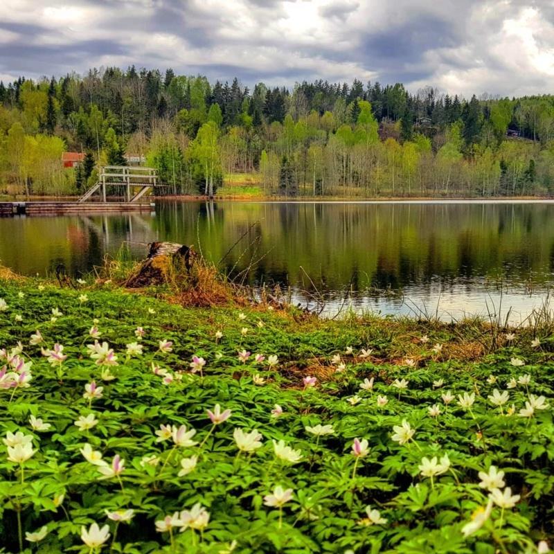 Роскошные пейзажи Норвегии - Страница 12 Nrpih_10