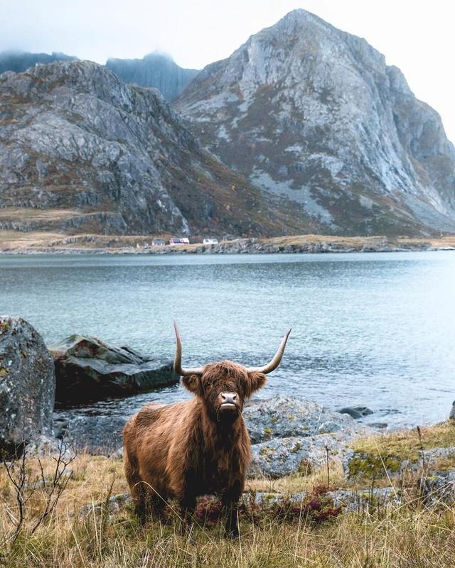 Роскошные пейзажи Норвегии - Страница 10 X0e1ol10