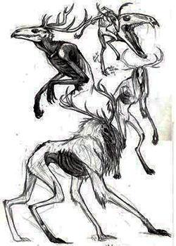 Wendigo [T: Criatura mágica] [L: Bosques y Cementerios] [D: Difícil] 33333318