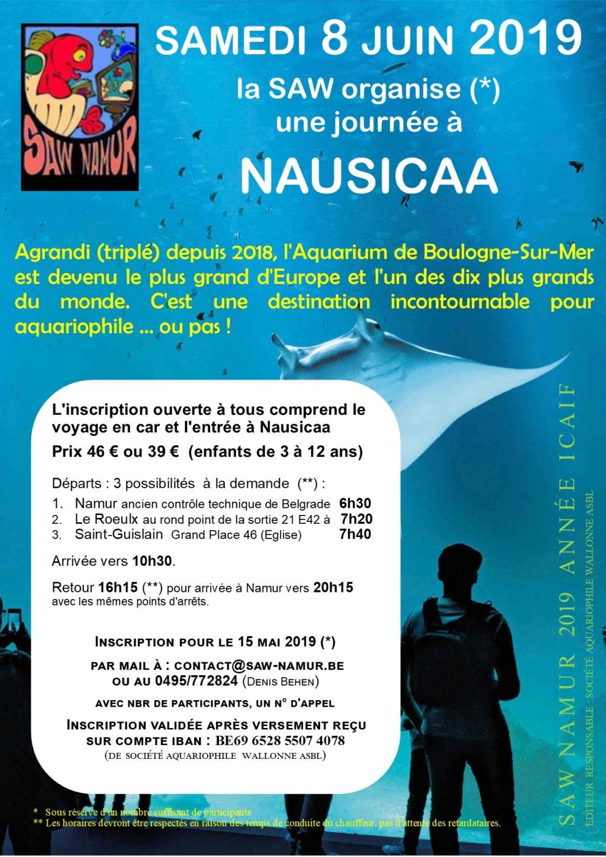 Voyage à Nausicaa organisé par la SAW de Namur Voyage11