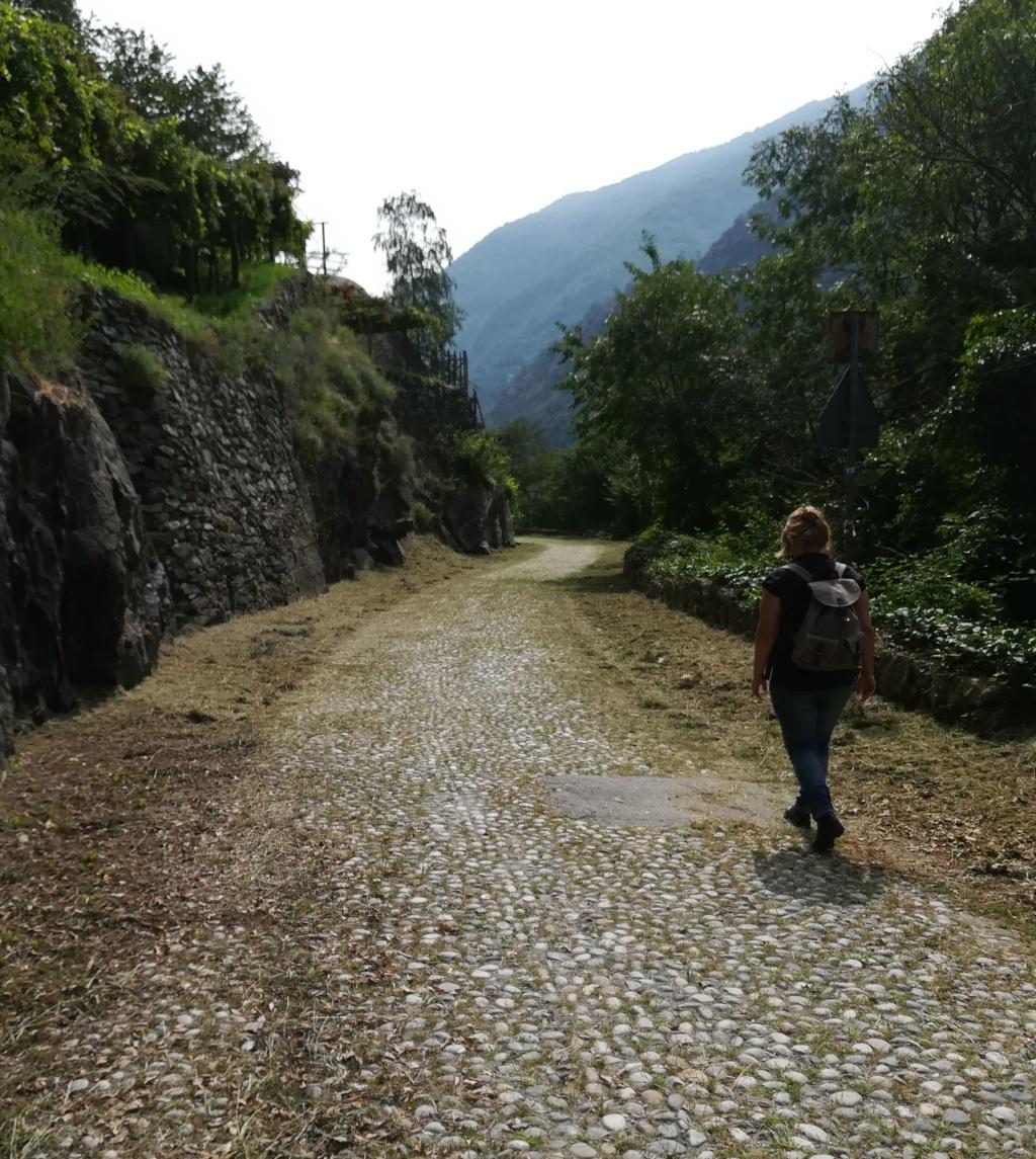 """La """"luuuuuuunga"""" Via delle Gallie Img_2237"""
