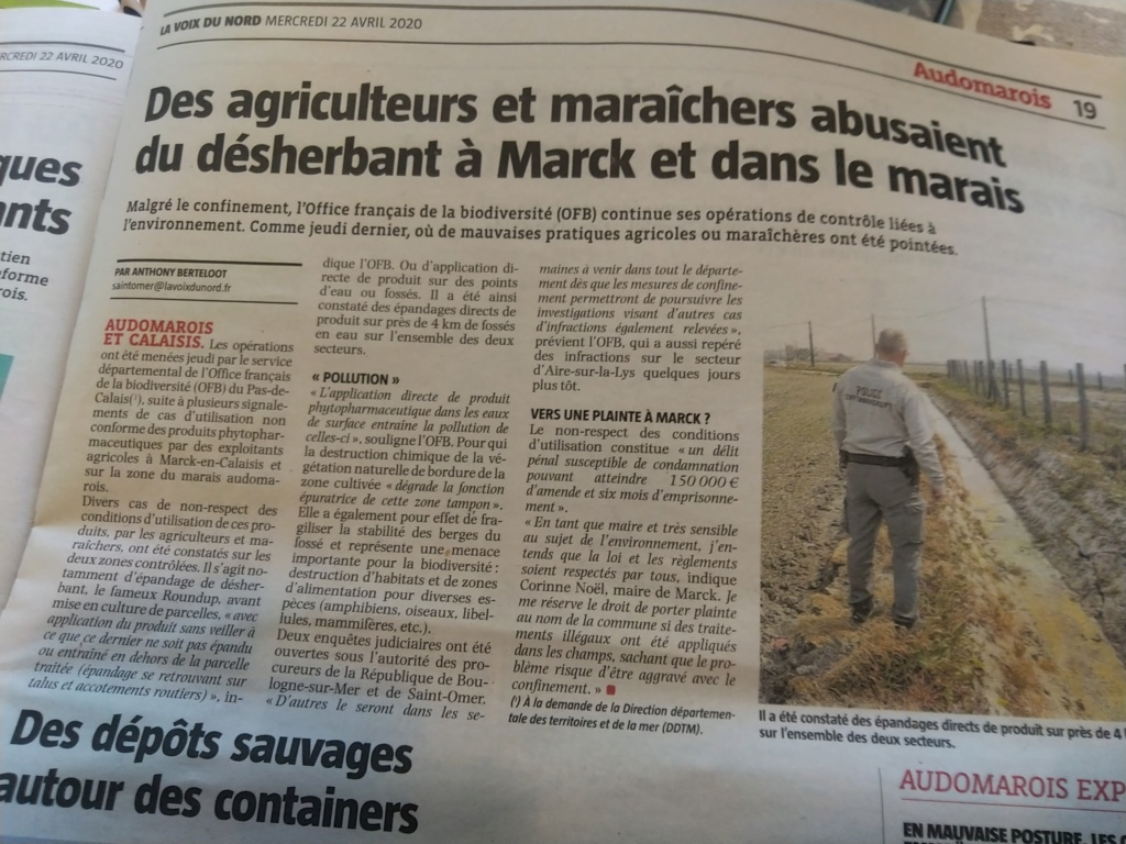 Pas-de-Calais : Des agriculteurs soupçonnés d'avoir pollué des fossés avec un herbicide Img_2198