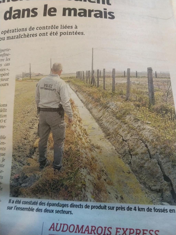 Pas-de-Calais : Des agriculteurs soupçonnés d'avoir pollué des fossés avec un herbicide Img_2199