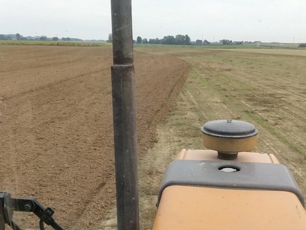 blé apres blé Img_2253
