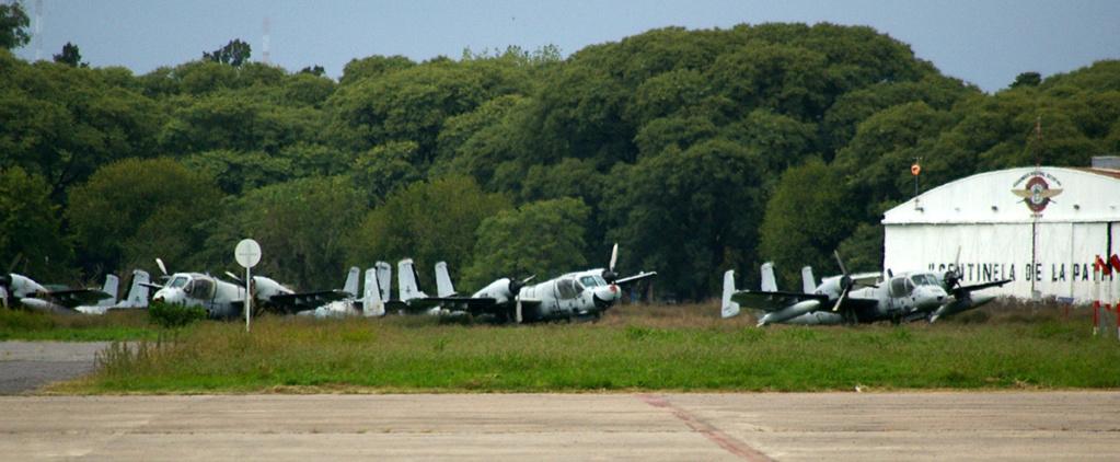 Aviacion del Ejercito Argentino - Página 8 Avione10
