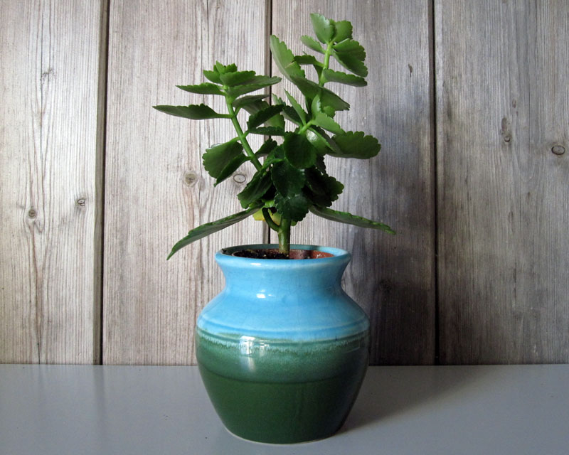 Small blue and green vase Bluegr10