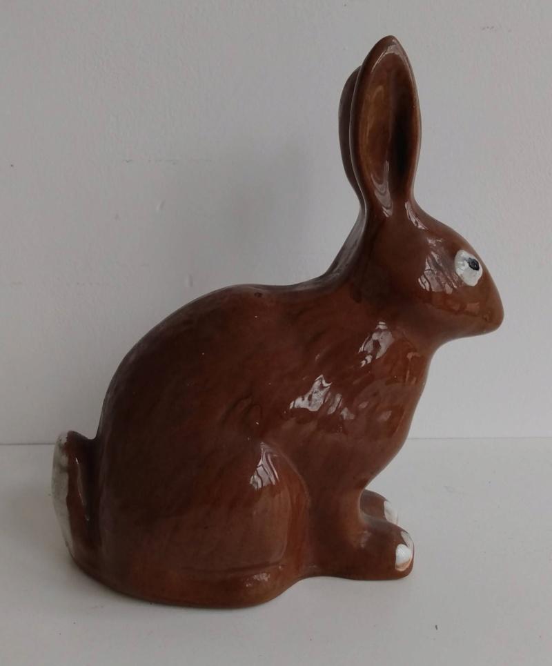 Rabbit marked P Img_2106
