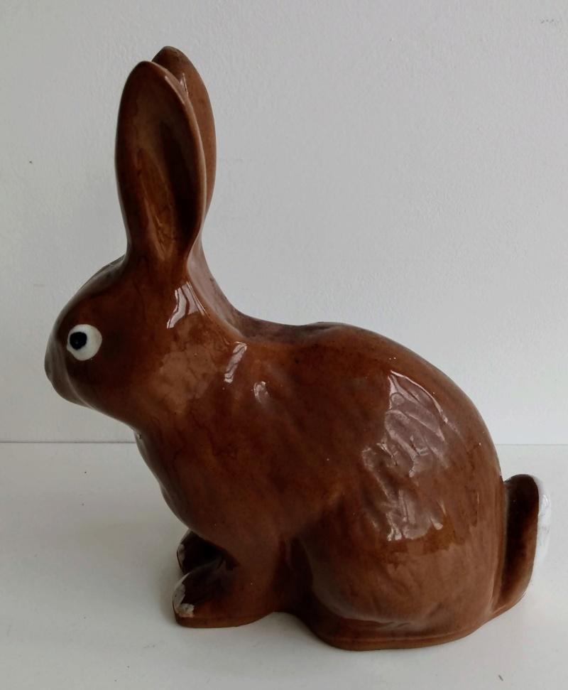 Rabbit marked P Img_2107