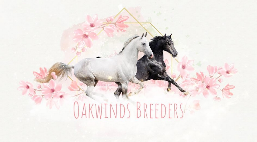 Oakwinds Breeders II
