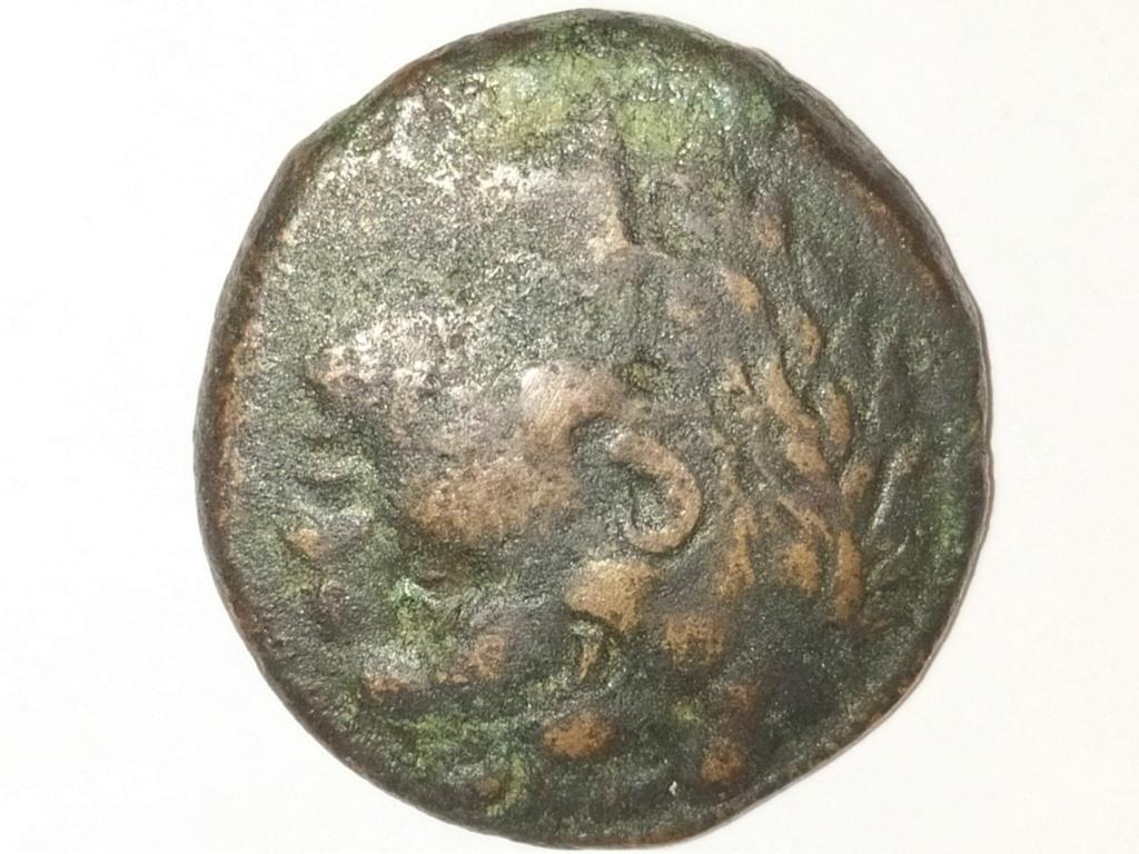 Bronce de Pirro de Epiro. Sicilia, 278-276 a.C. Img_2020