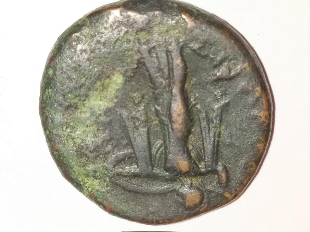 Bronce de Pirro de Epiro. Sicilia, 278-276 a.C. Img_2021