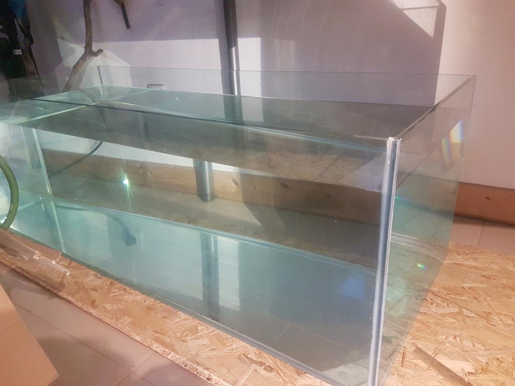 [HELP vitre latérale aquarium ébrecher 20190410