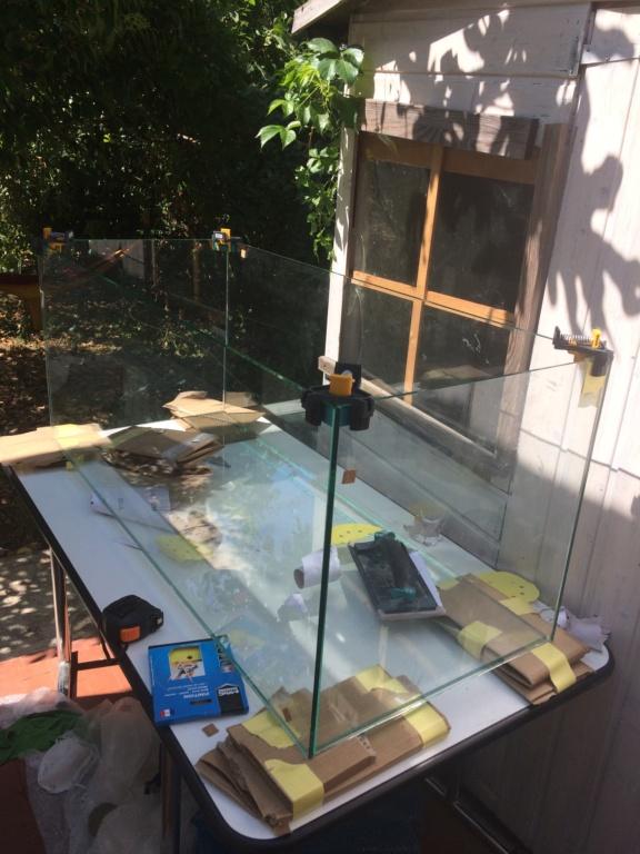 [PROJET]300l fait maison biotope Rio tapajos  Dca58c10