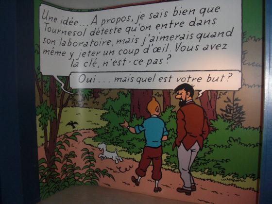 Avec Tintin, à la découverte du château de Cheverny Cimg4615