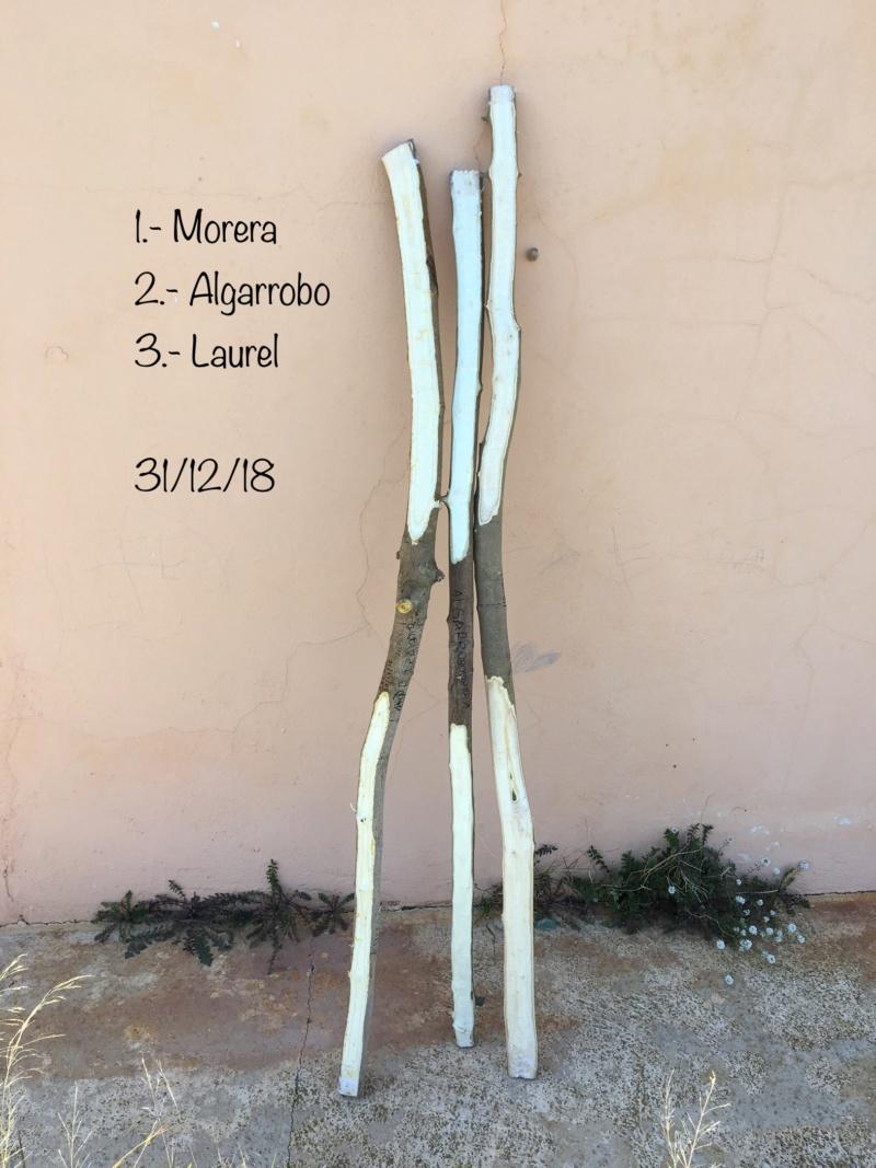 CORREGIR MADERA - CALOR SECO O HUMEDO? Foto_114