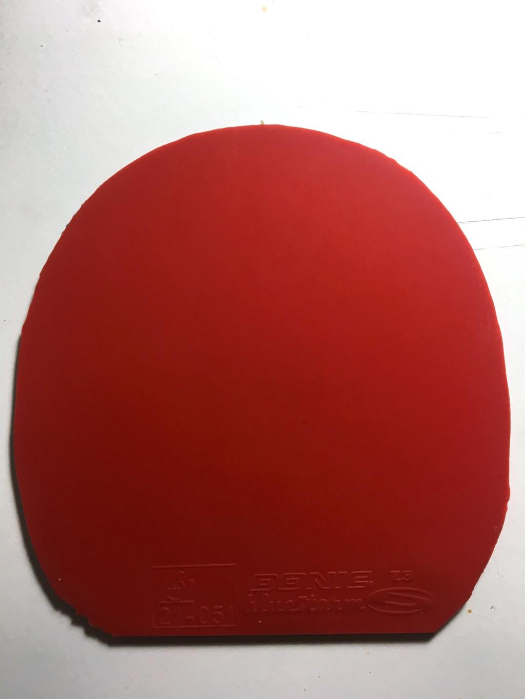 Donic Bluestorm Z3 rouge 1.8mm Img_8611