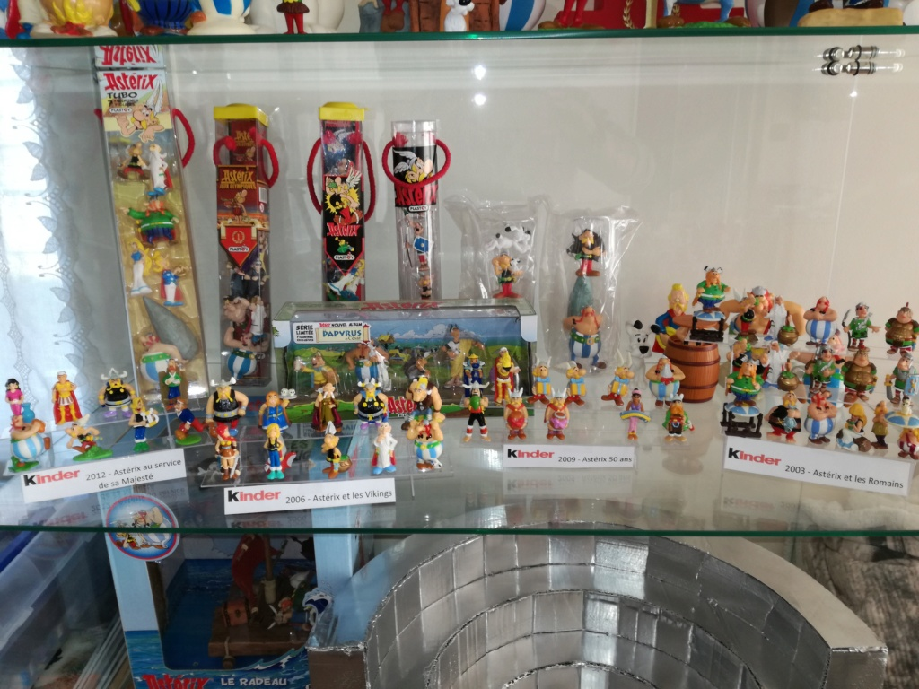Ma petite collection  Img_2071