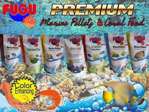 Our Product Banner10