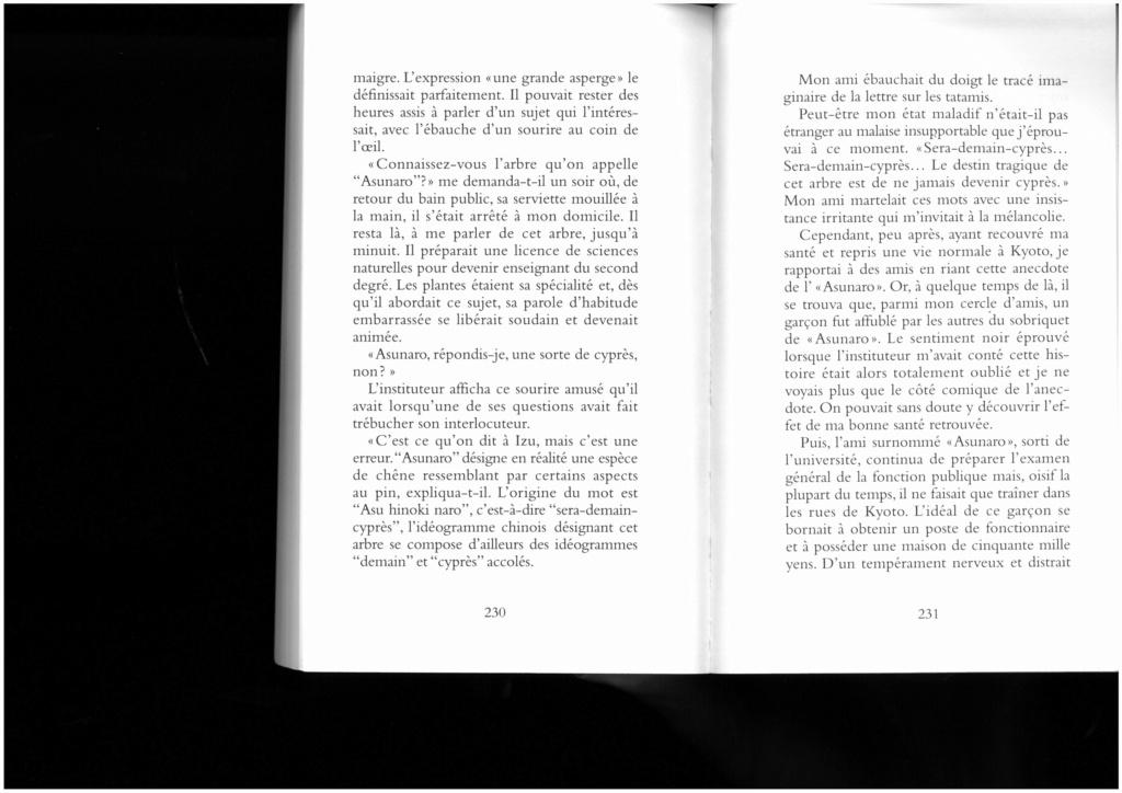Fragments - Eclats - Kaléïdoscope - Page 4 Skm_c367