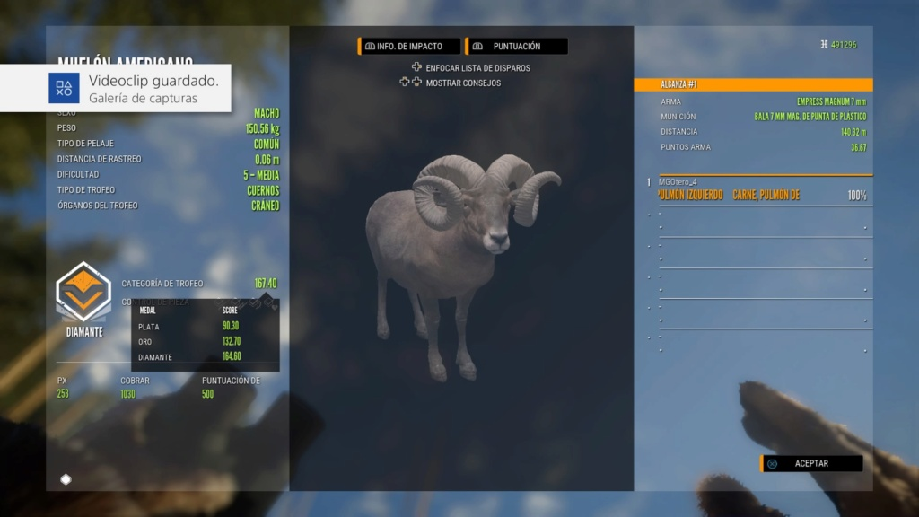 TOP 5 BIGHORN SHEEP Ps_app31