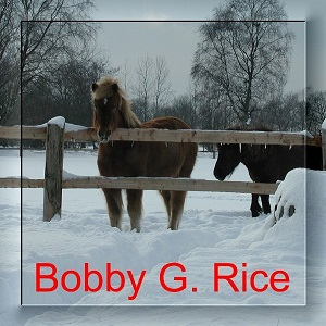 Bobby G. Rice - Discography (6 Albums) Bobby_12