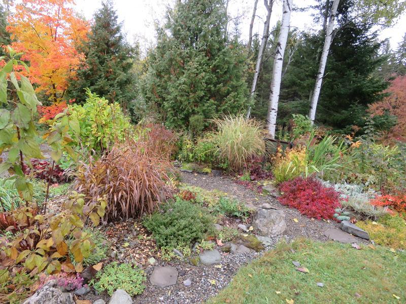 C'est l'automne chez Tulipe 127 - Page 3 Img_2813
