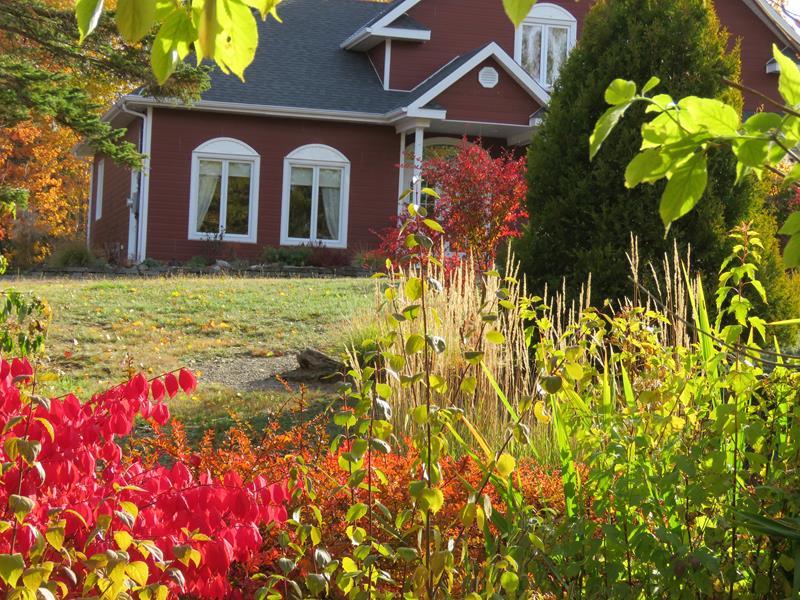 C'est l'automne chez Tulipe 127 - Page 4 Img_3135