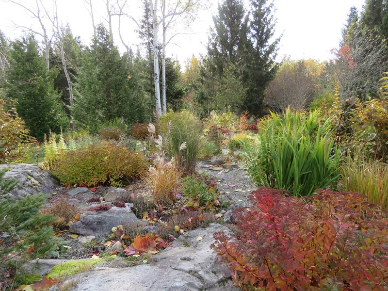 C'est l'automne chez Tulipe 127 - Page 5 Img_3227