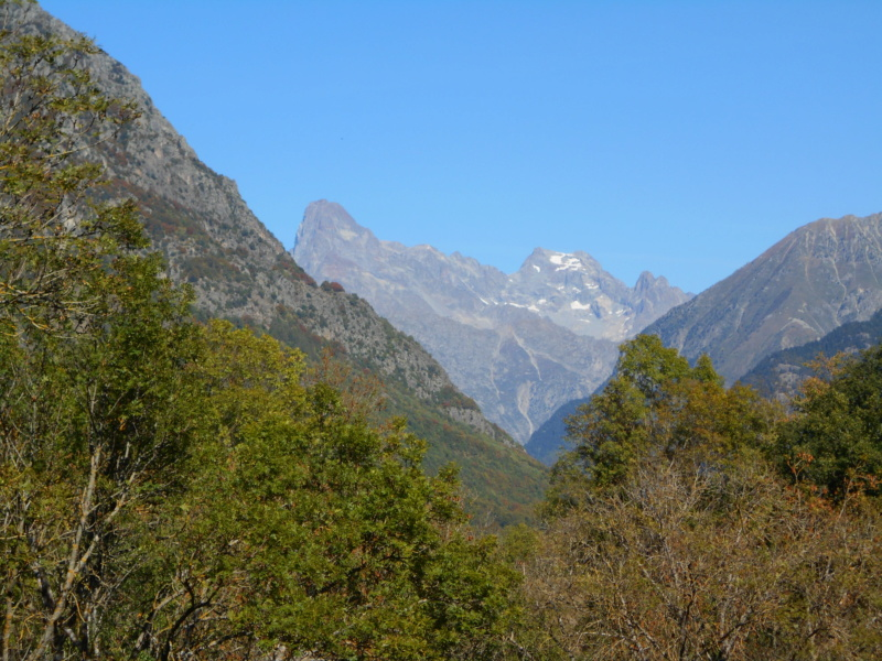 Cime du Vallon plus de glacier !! Cime_d40