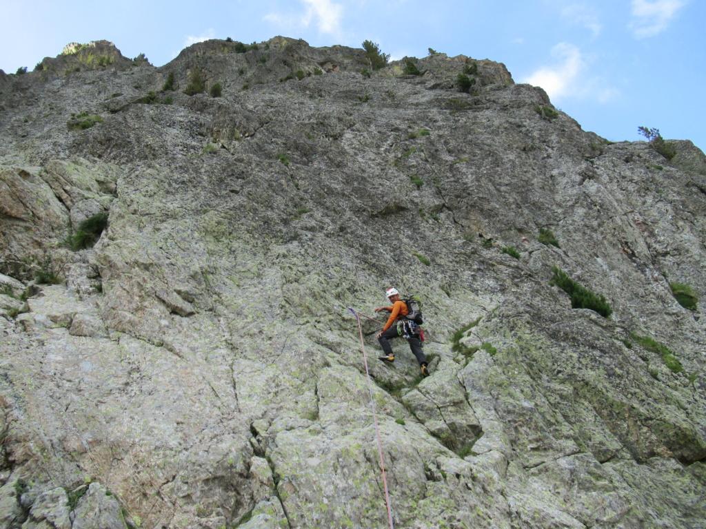 nouveauté au Grand Cayre Img_5032