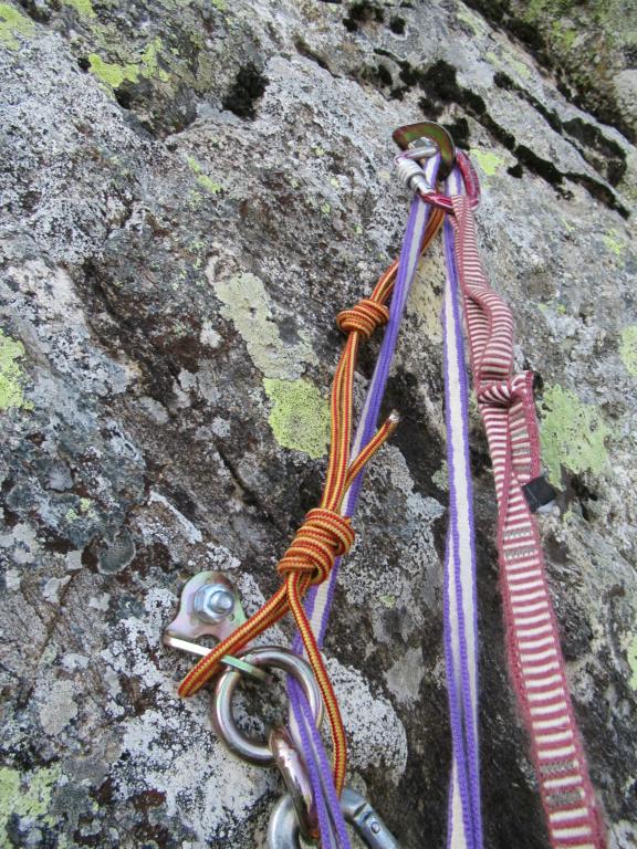 nouveauté au Grand Cayre Img_5033