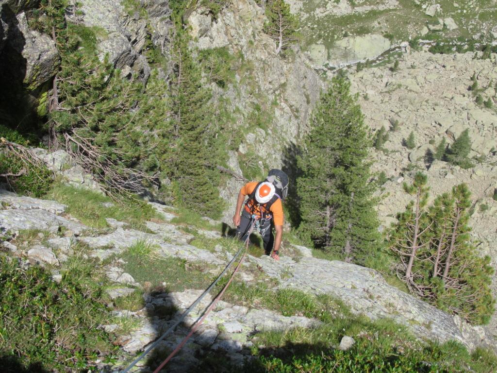 nouveauté au Grand Cayre Img_5036