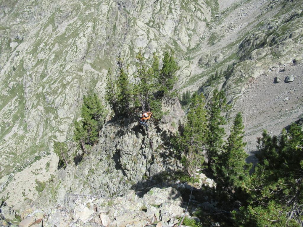 nouveauté au Grand Cayre Img_5038