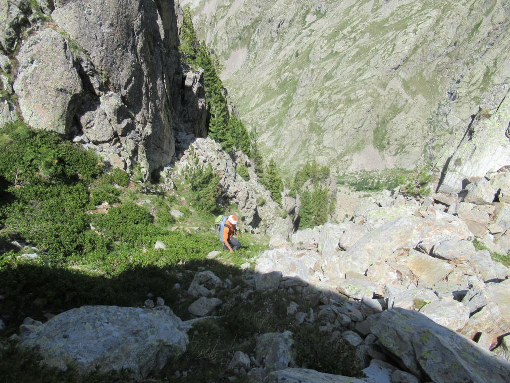 nouveauté au Grand Cayre Img_5039