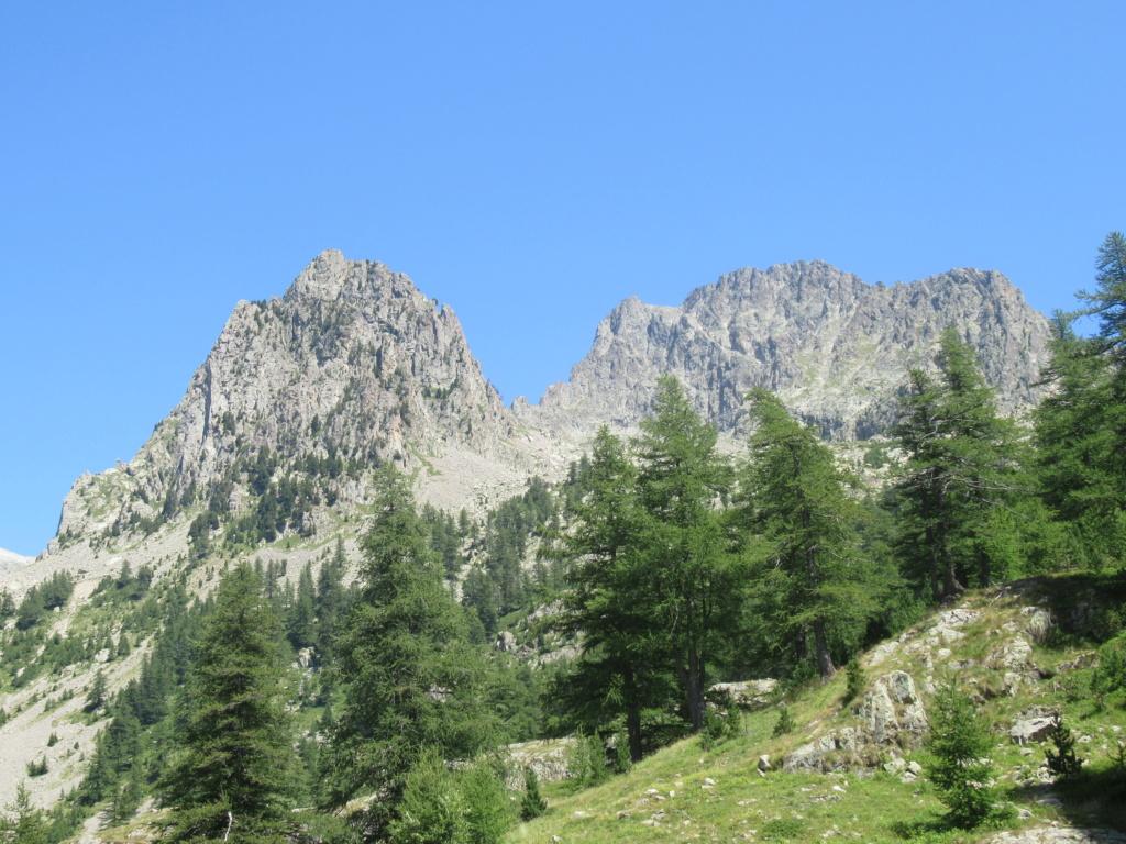 nouveauté au Grand Cayre Img_5110