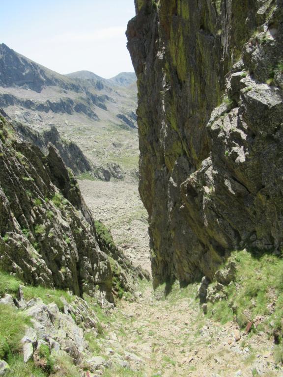 nouveauté au Grand Cayre Img_5111