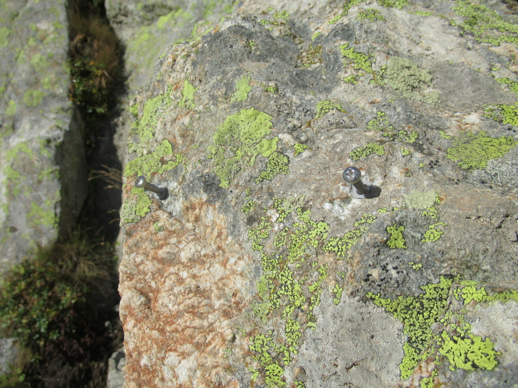 Rêves dans le Tiroir Img_5826