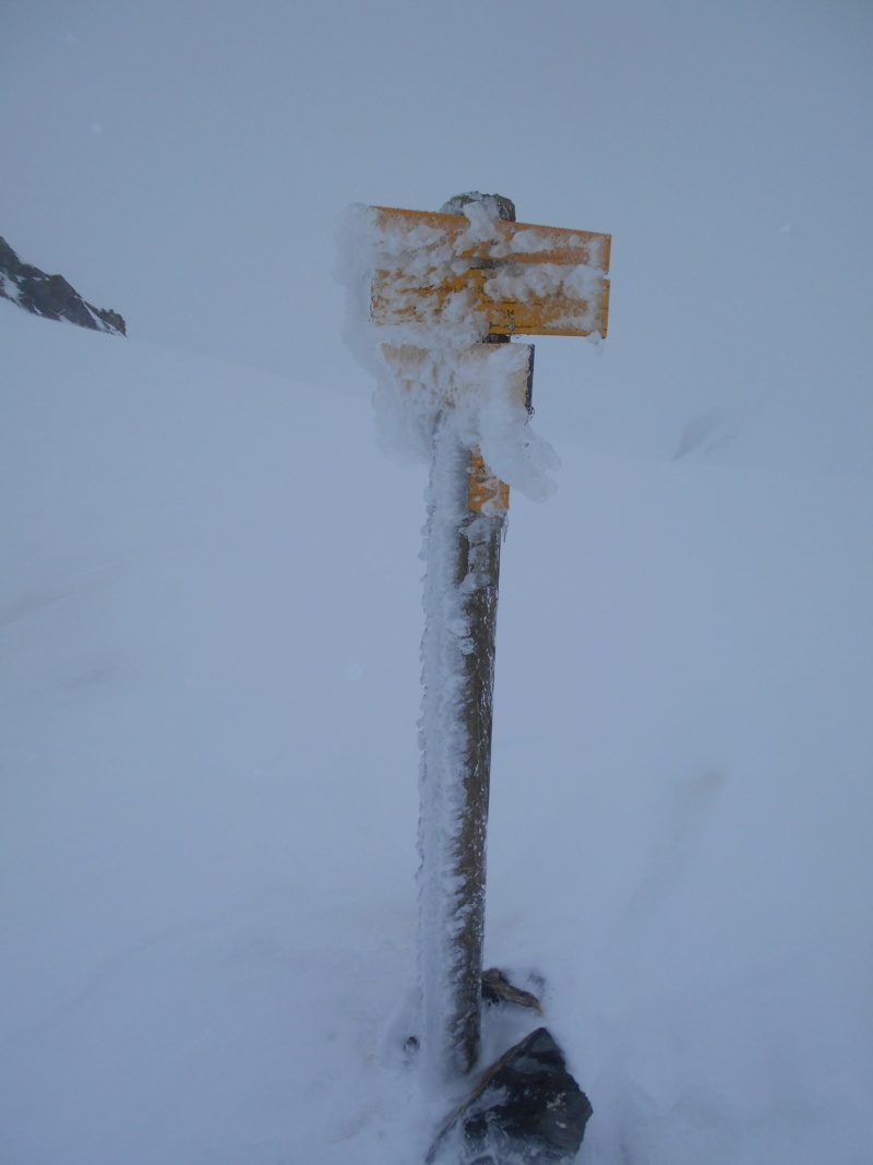 Mt Mounier dans la cousse... Mounie14
