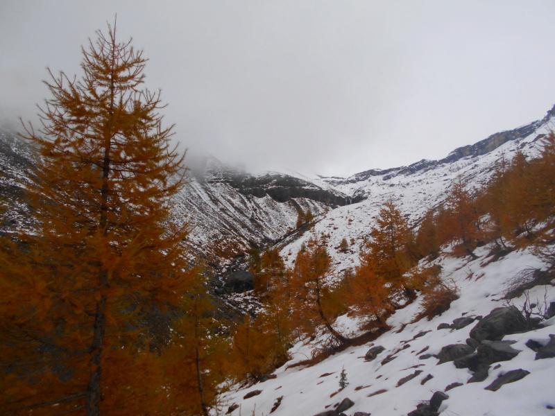 Mt Mounier dans la cousse... Mounie20