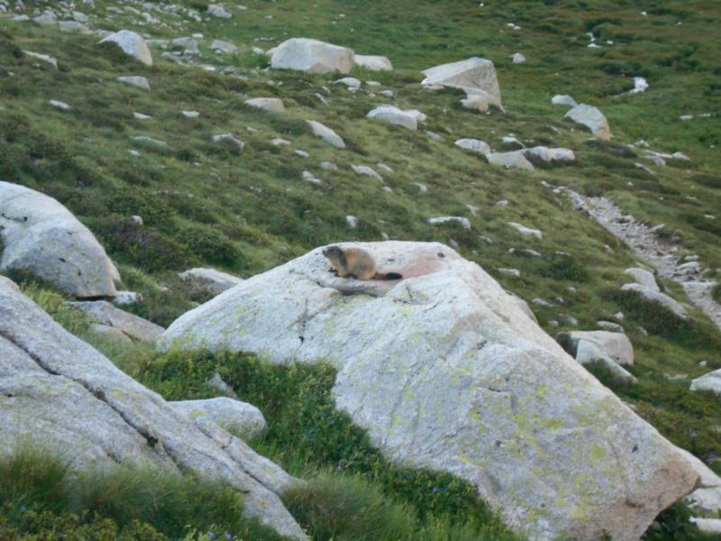Granit 4 **** au Lac Nègre Przofo11