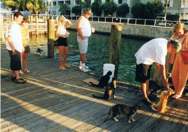 [WDW] 30ans en 2013 : 3 semaines en Floride : Tous vos conseils ici ;) N5677810