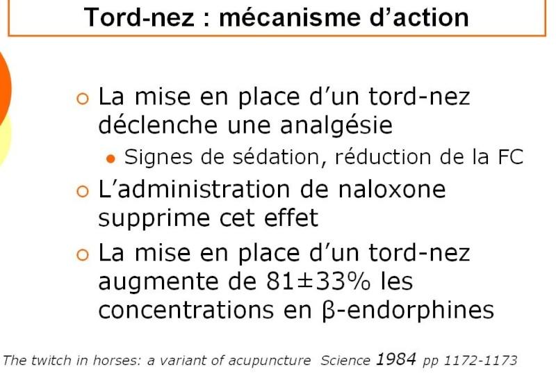 le tord-nez, instrument de torture ou alternative?  Screen43