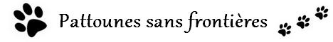 Pattounes sans frontières (sous l'accord de Sky) Sans_t10