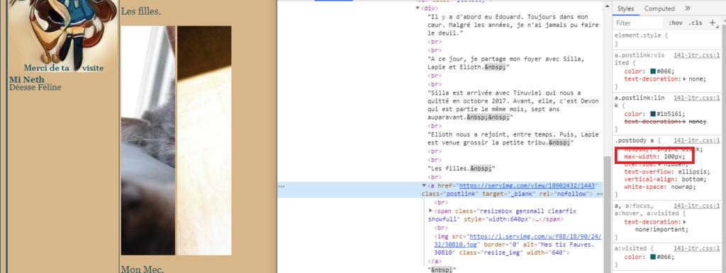 (#4160) : Redimensionnement automatique des images postées - Page 2 Large10